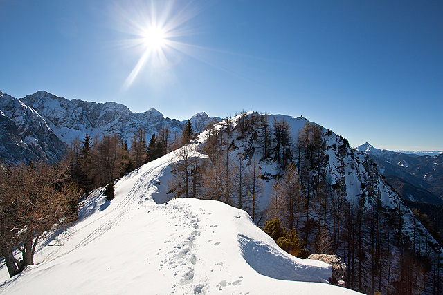 Kopanje v zimskem soncu na Golem vrhu