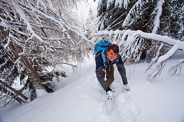V snegu na Goli vrh