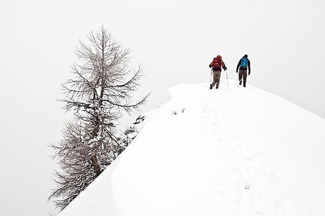 Goli vrh sneg