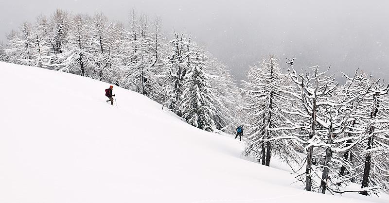 Goli vrh v megli in snegu