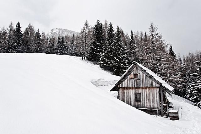 Jenkova planina