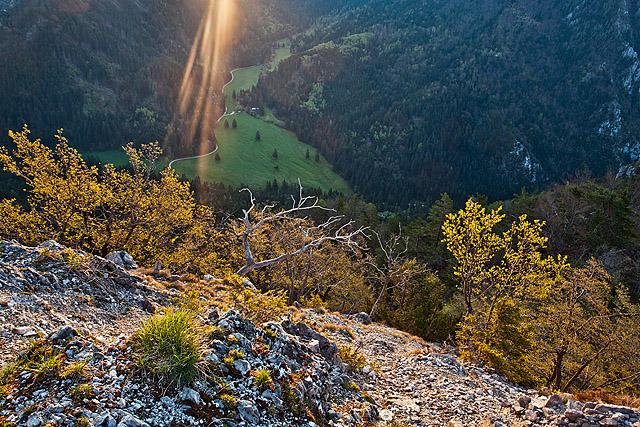Dolina Draga