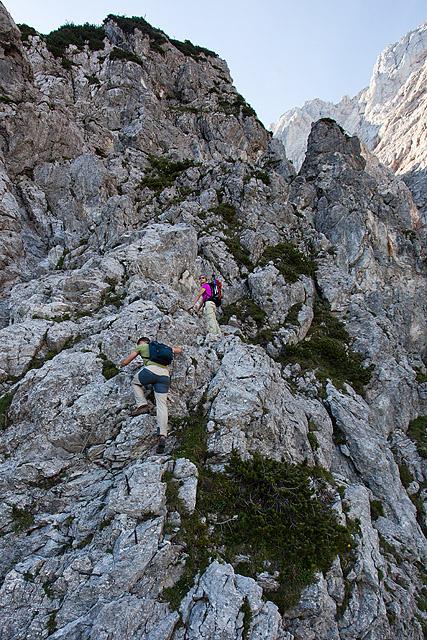 Ledine Slovenska pot