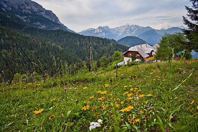 Kmetija Bukovnik