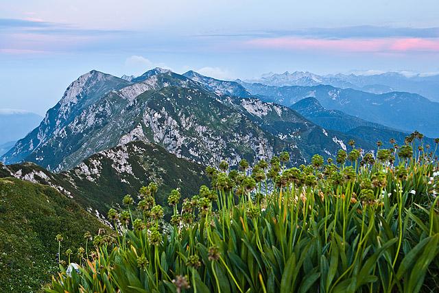 Spodnje Bohinjske gore zjutraj