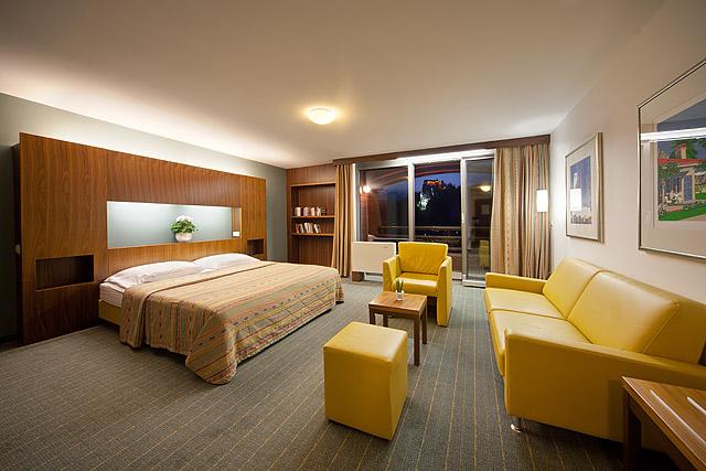 Hotel Park suita