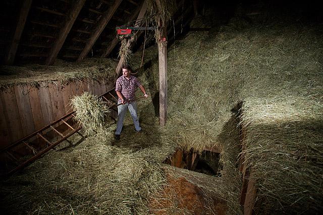 Kmet na seniku