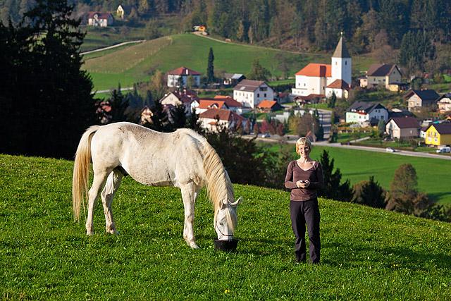Mislinja konji