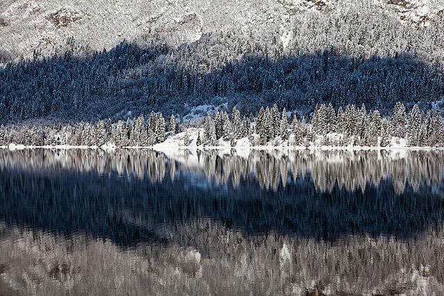 Odsevi bohinjsko jezero