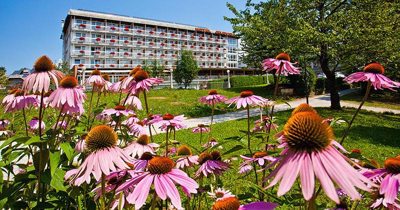 Fotografiranje za Hotel Jelovica Bled – poletna izvedba