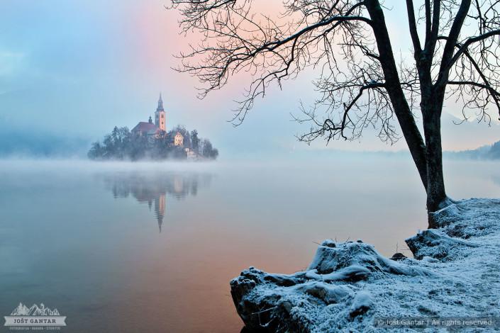 Zgodnje jutro na obalah Blejskega jezera.