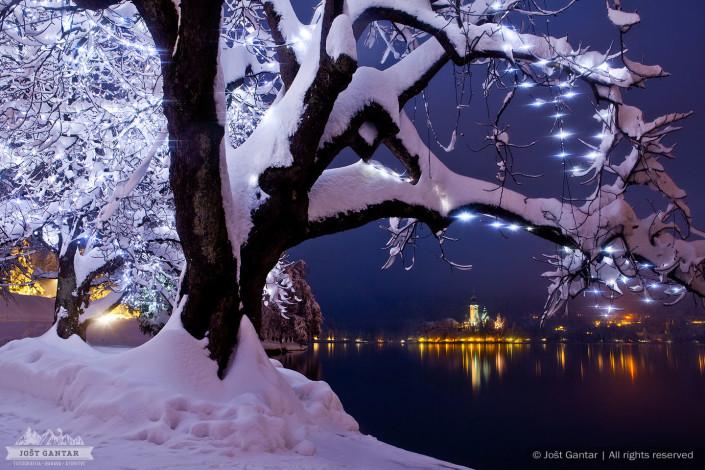 Bled zimska fotografija.