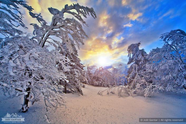 Zimska idila na Javorniku.