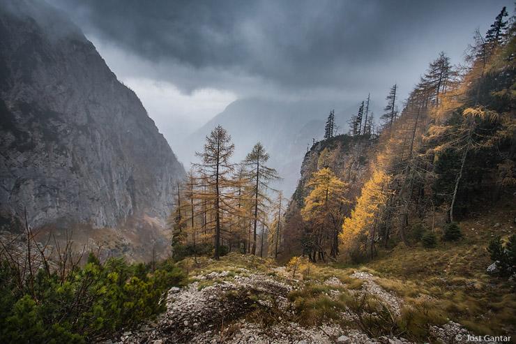 Dolina Kamniške bistrice