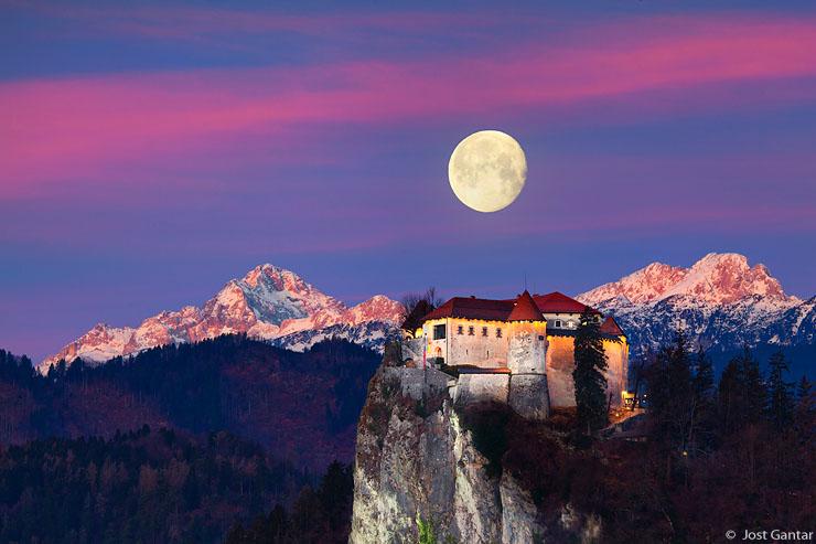 Blejski grad in polna luna