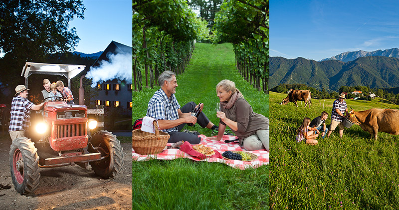 Feel Slovenian Countryside through its Tourist Farms