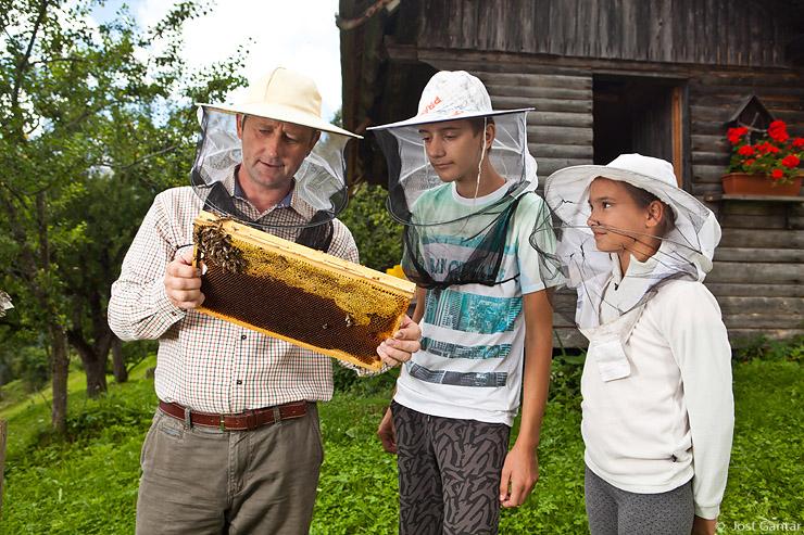 Čebelar in otroci